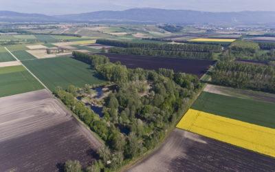 Assainissement et développement agricole de la plaine de l'Orbe