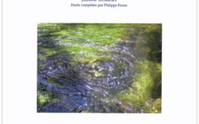 Sourciers et chercheurs d'eau, évolution d'une pratique et d'un savoir